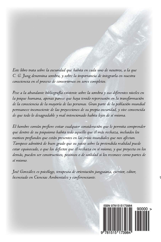 Amazon.com: Cómo integrar tu sombra (Spanish Edition ...