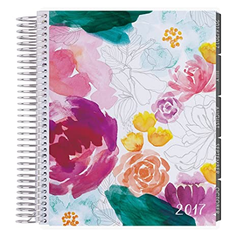 Erin Condren 12 month 2017 Life Planner - Watercolor Floral Vertical Neutral, Neutral Interior (AMA-12M 2017 32)