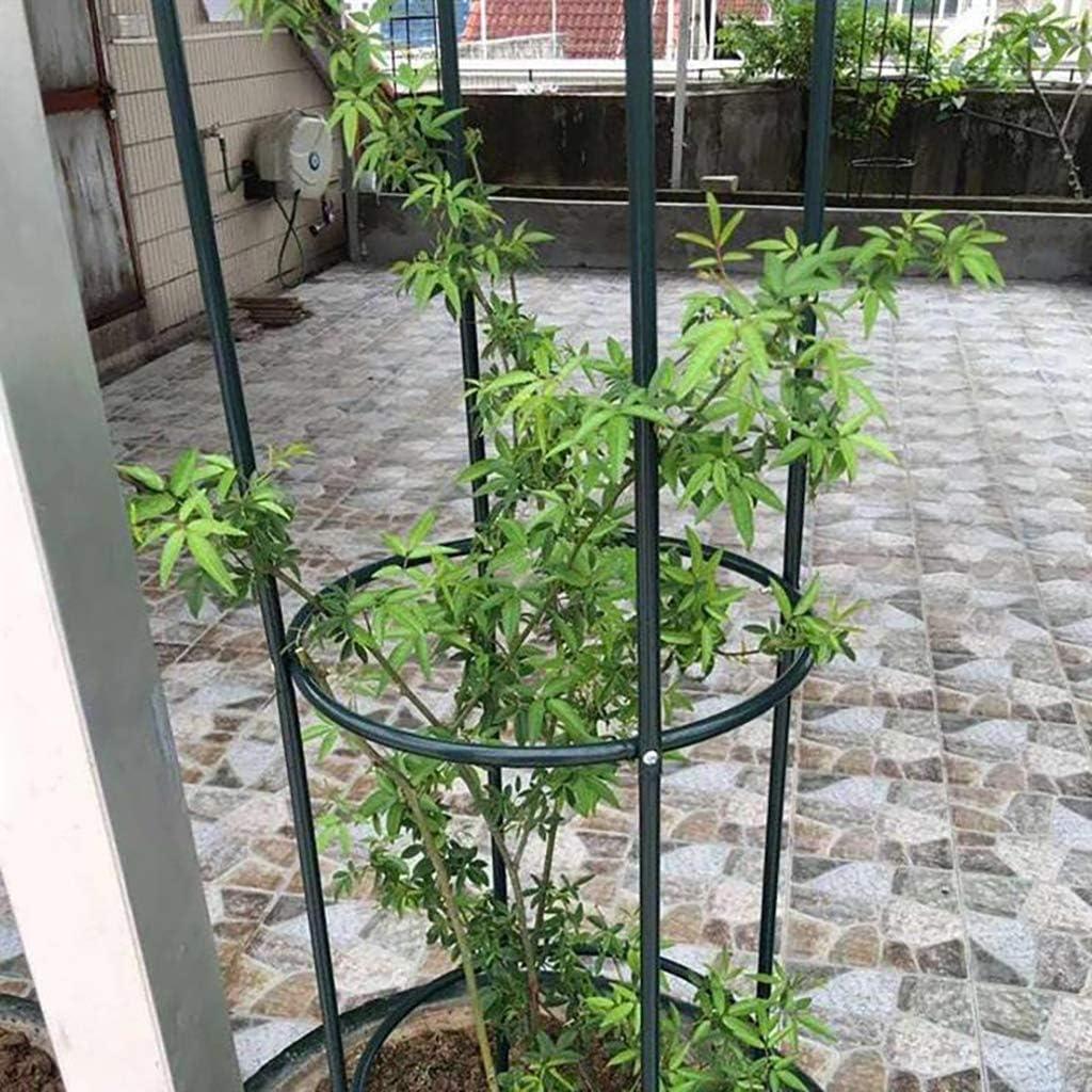 Enrejado de Flores Redondo Enredadera Enredadera de jardín para ...