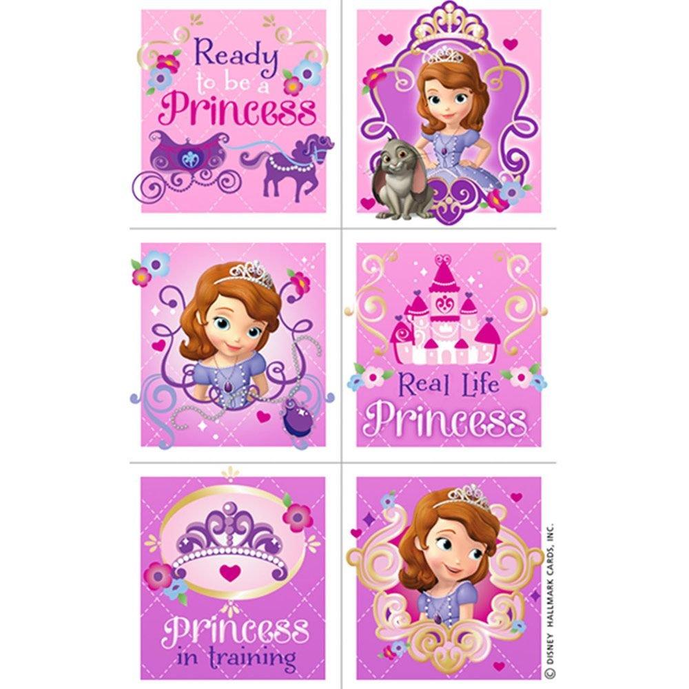 Sofia the First Stickers Party Favors Set Sofia the First Party Favors Bundle Includes 8 Sheets of Princess Sofia Stickers with Bonus Door Hanger