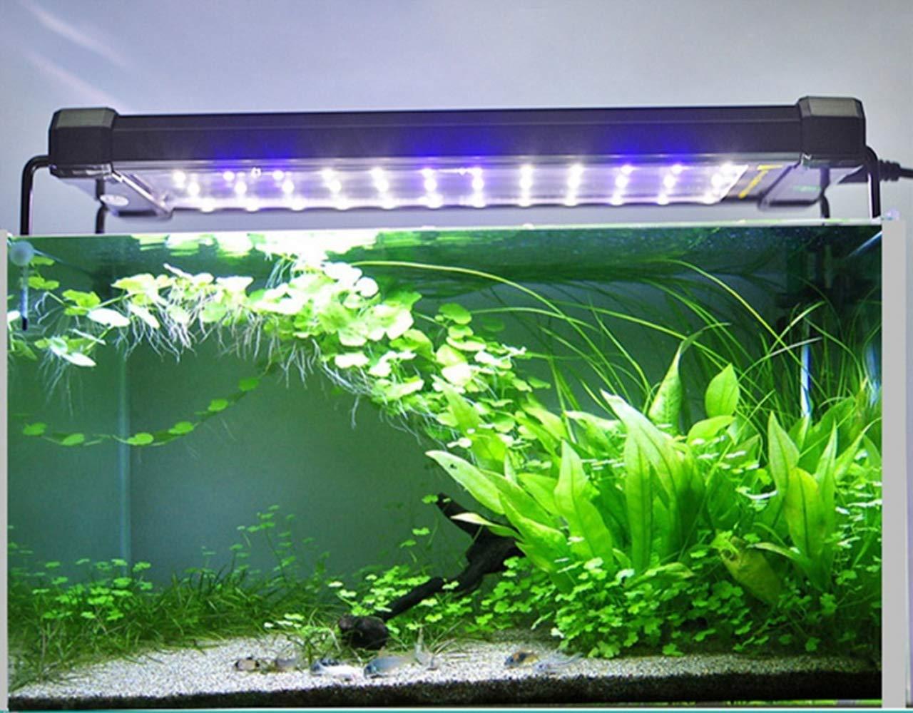 Enchufe EU 120 en Blanco 24 en Azul 25w Lightess L/ámpara de Acuarios y Peceras LED Luz para Plantas y Estanques Sumergible Luz de Rocalla Iluminaci/ón Cambio de Color