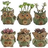 Ogrmar 6Pack Owl Plant Window Boxes Cute Owl Flower Pot/Modern Ceramic Succulent Planter Pots/Tiny Flower Plant…