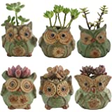 Ogrmar 6Pack Owl Plant Window Boxes Cute Owl Flower Pot/Modern Ceramic Succulent Planter Pots/Tiny Flower Plant Containers An