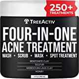 TreeActiv Four-in-One Acne Treatment   Sulfur Face Wash   Bentonite Clay Cystic Acne Spot Treatment for Face   Facial Mask &