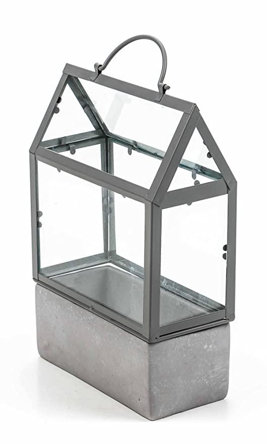 Mini Gewachshaus Zement Basis Metall Gestange Glas Einleger