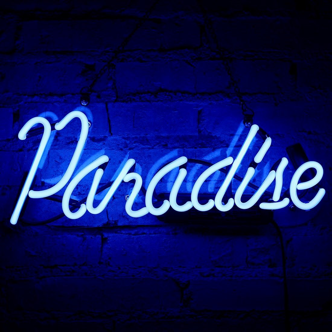 Neon Light Sign Paradise Neon Bar Sign Handmade Glass Neon Sign for Gift Pub Recreation Room Party Cafe Store Bedroom Wall Decor Lamp 14'' x 6'' Blue