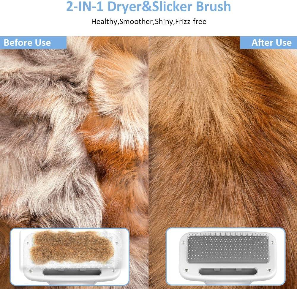 DADYPET Cepillo para Perros y Gatos, secador de Pelo para Perros y Gatos combinación de secador de Pelo y Cepillo Velocidad Ajustable Adecuado para Perros y Gatos pequeños