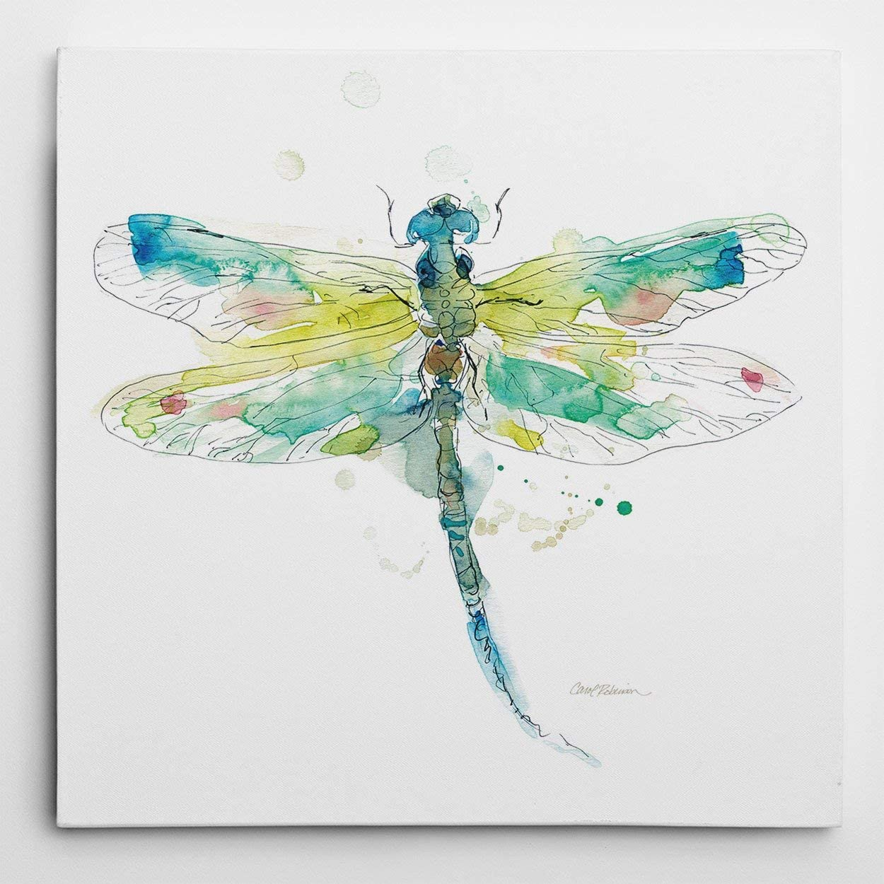 WEXFORD HOME Carol Robinson 'Sketchbook Dragonfly Gallery Wrapped Canvas Wall Art, 24x24