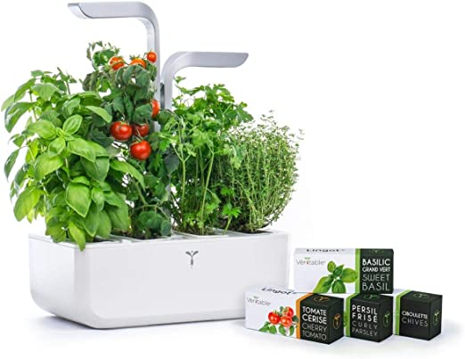 Véritable Smart Edition - Jardín hidropónico de hierbas (incluye 4 hierbas aromáticas de semillas): Amazon.es: Juguetes y juegos