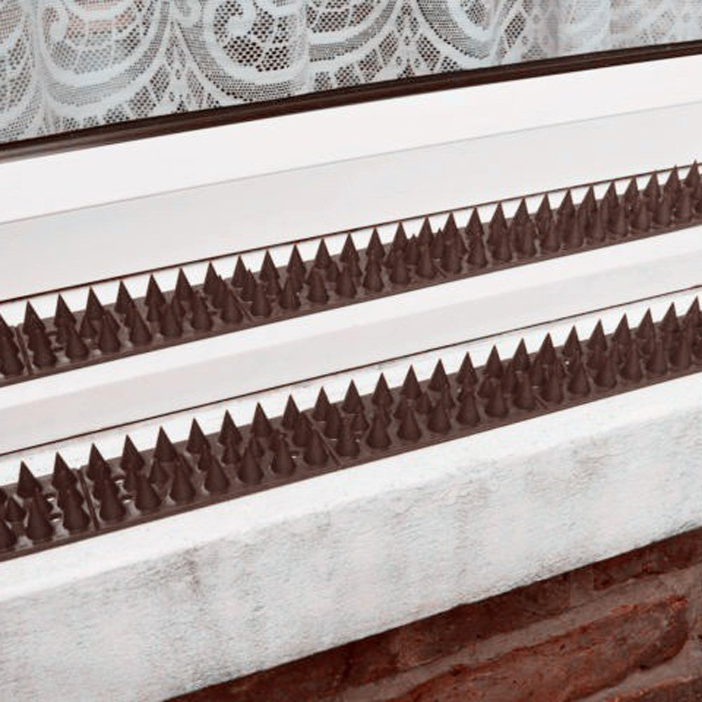 Forever Speed 10 Piezas Pinchos Anti Aves y Anti Gatos y Anti Pajaros Polipropileno Paneles con Pinchos Marrón: Amazon.es: Jardín