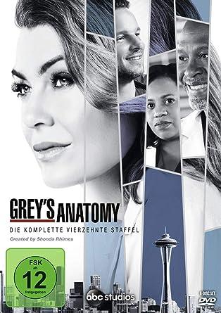 Greys Anatomy Die Jungen ärzte Die Komplette 14 Staffel 6 Dvds