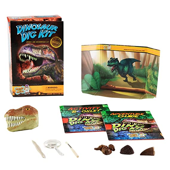 Discover with Dr. Cool Dinosaur Dig Science Kit - Dig Up and Collect 3 Real Dinosaur Fossils!: Amazon.es: Juguetes y juegos