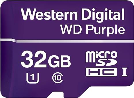 Amazon.com: Western Digital wdd032g1p0 a WD morado 32 GB ...