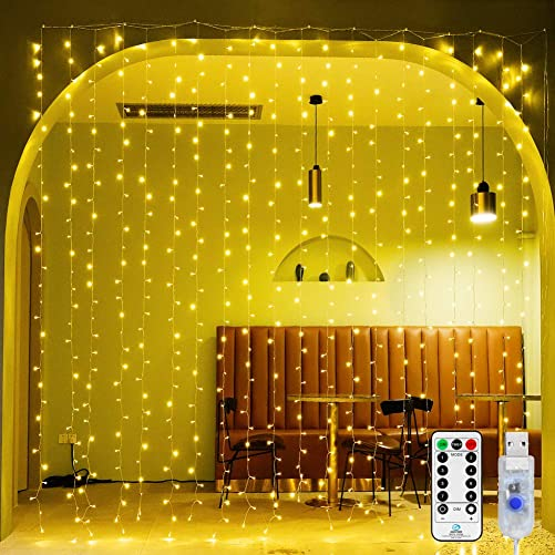 Ollny LED Curtain Lights 300 LED Hanging Lights 9.8Ft9.8Ft Fairy Lights with Remote 8 Modes and USB Plug in String Light for Bedroom Wall Decoration for Girl Children Indoor Outdoor Party Christmas