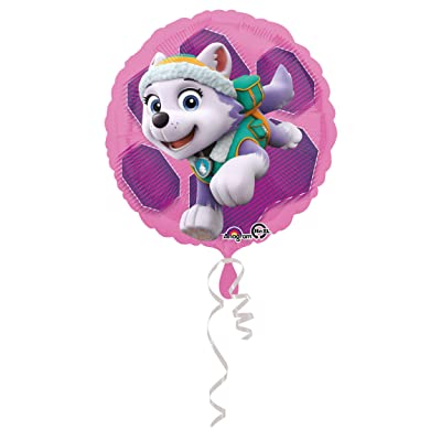 "Paw Patrol Skye and Everest 18"" Balloon (Each): Toys & Games [5Bkhe0806445]"