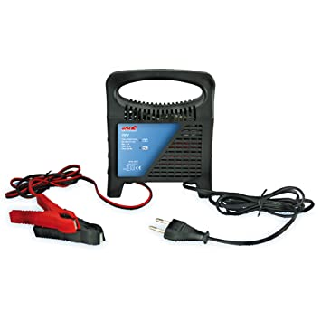Alpin 62107 - Cargador de baterías de coche (6 A, 12 V)