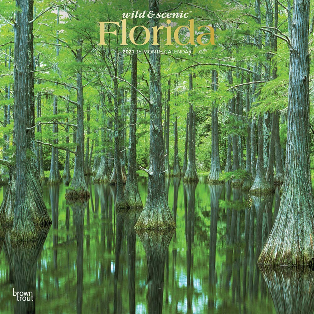 Full Moon Calendar 2021 Florida Florida Wild & Scenic 2021 12 x 12 Inch Monthly Square Wall