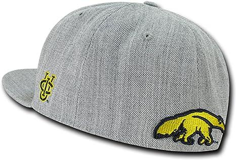 UCI UC Irvine UC Irvine Anteaters NCAA Freshman Fitted Flat Bill Baseball Cap Hat