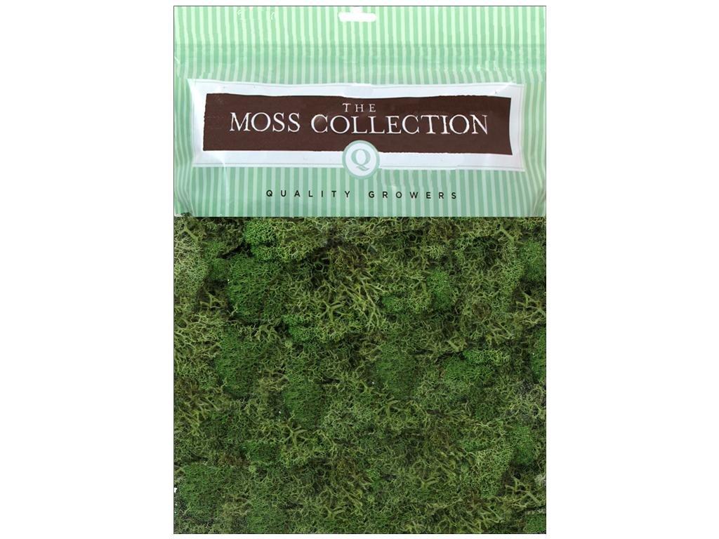 Quality Growers Reindeer Moss - Basil 2066