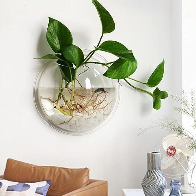 uooom montado en la pared tanque de peces acrílico cuenco Acuario Transparente para Colgar maceta decoración del hogar: Amazon.es: Hogar
