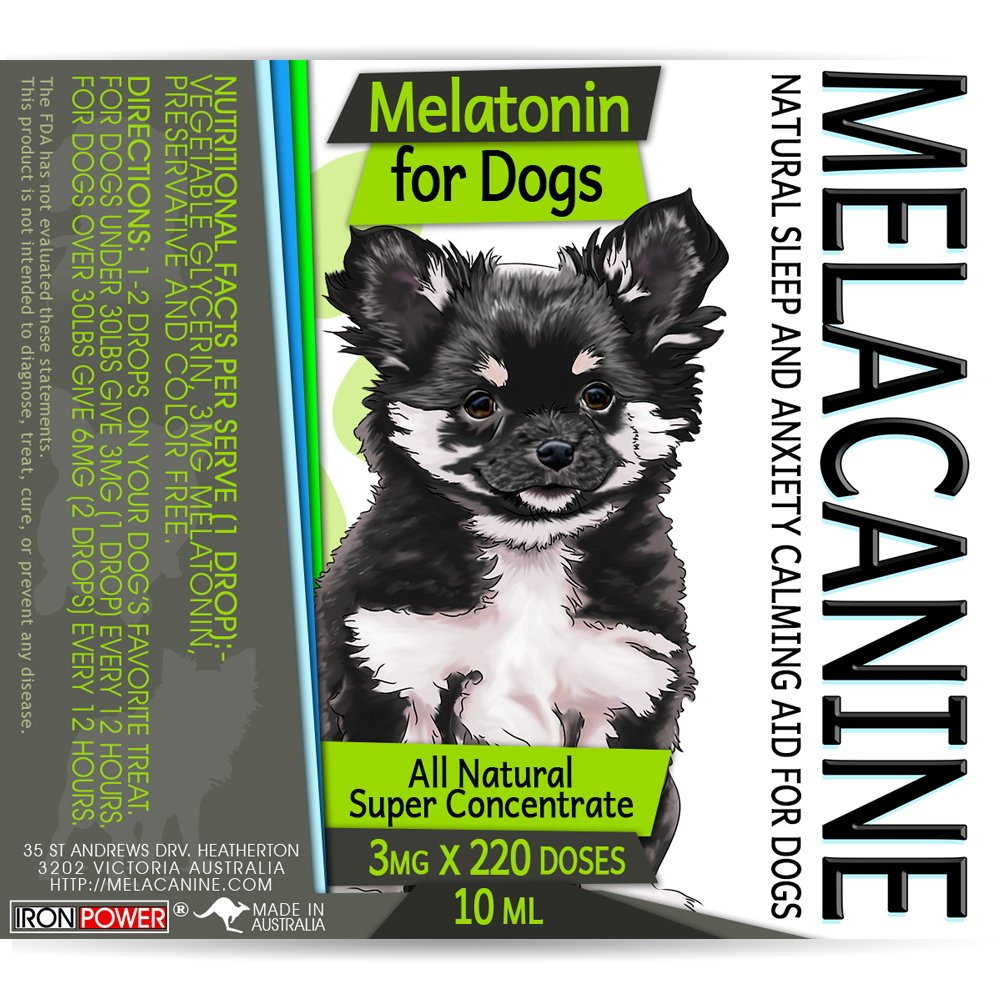 Amazoncom Melatonin For Dogs 3mg 220 Count Calming Aid Drops
