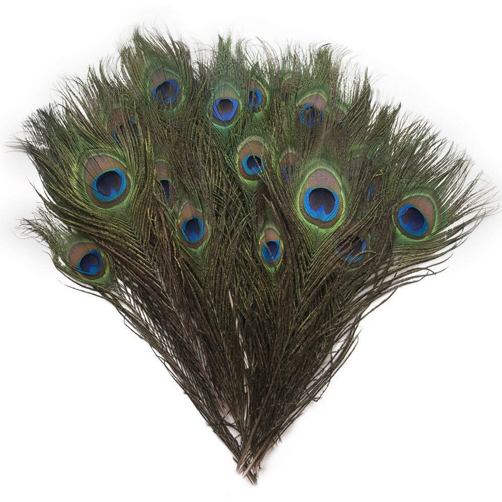 Piokio 200 pcs Natural Peacock Feathers Bulk 10-12 for Holiday Crafting