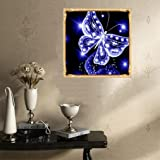 DIY 5D Diamond Painting Kit, Hoshell DIY 5D Diamond Embroidery Painting Becautiful Butterfly Cross Stitch Craft Home Wall Gift Decor