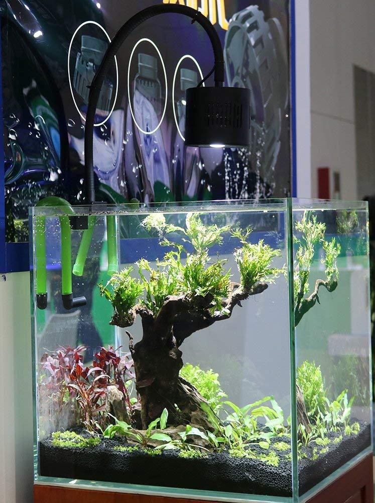 Lominie LED Aquarium Light, Freshwater Planted Tank Light Asta 120 Clamp Clip Lamp for Refugium Algae Fish Tank 24inch with Gooseneck by Lominie