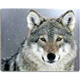 Brian114 Custom Predator Wolf Snow Anti Slip Comfort Gaming Mouse Pad - Durable Office Accessory Gift