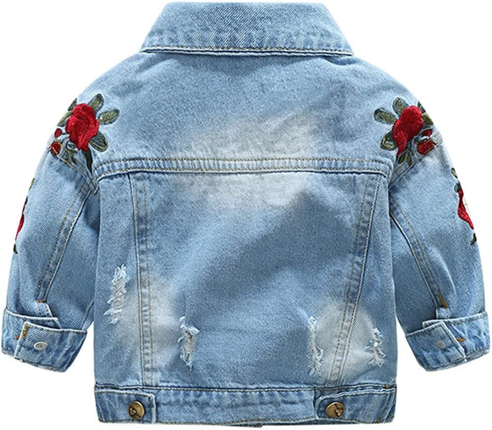 6 Years Tem Doger Toddler Kids Baby Girls Floral Embroidered Ripped Holes Jacket Jeans Coat Outwear Tops Clothes 6 Months