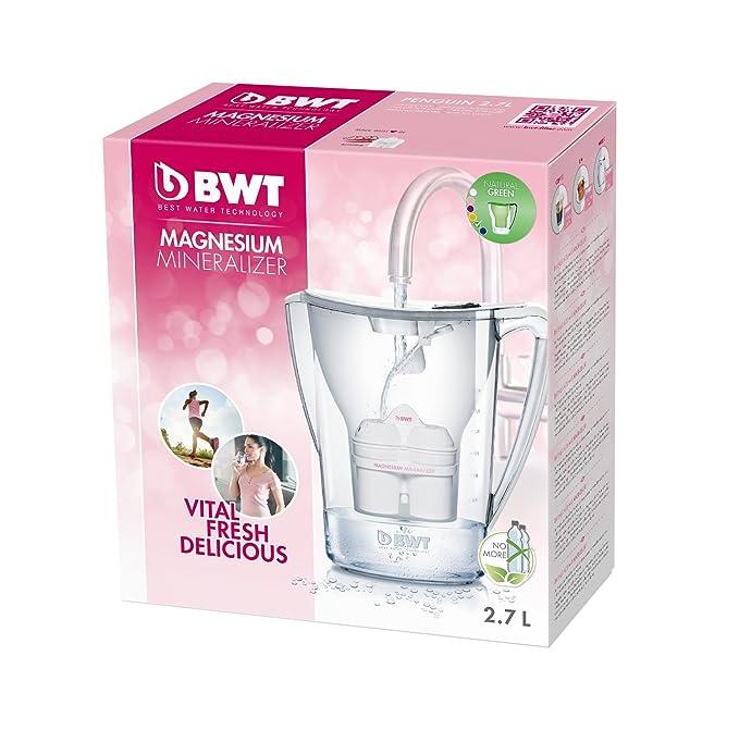BWT WF 8704 - Jarra con filtro para agua (2,7 litros), color verde: Amazon.es: Hogar