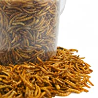GardenersDream Dried Mealworms Mix Wild Bird Food Large Variety