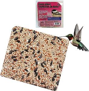All Season Suet Wild Bird Food Cake Treat 11.25 oz Heath Outdoor Berry Blast