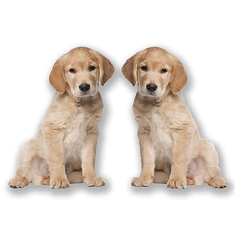 2 x 20 cm Labrador pegatinas pegatinas de vinilo para ordenador portátil coche para perro Niñas