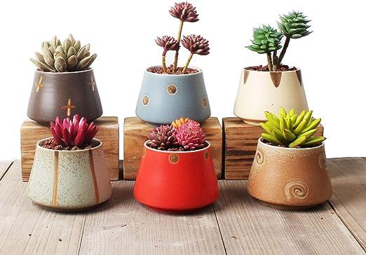 Ordso - Macetas pequeñas de cerámica para Plantas suculentas ...