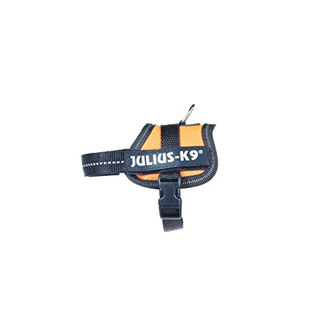 Julius-K9 162OR-BB1 Power Harness, Tamaño Baby 1, Naranja: Amazon.es: Productos para mascotas