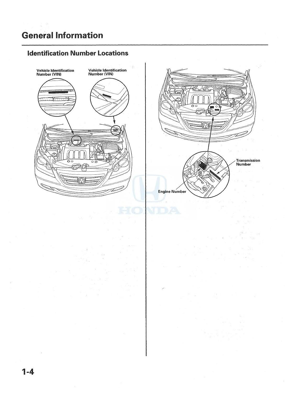 Bishko Automotive Literature 2005 2006 Honda Odyssey 1983 Accord Engine Diagram Shop Service Repair Manual Cd Electrical Oem