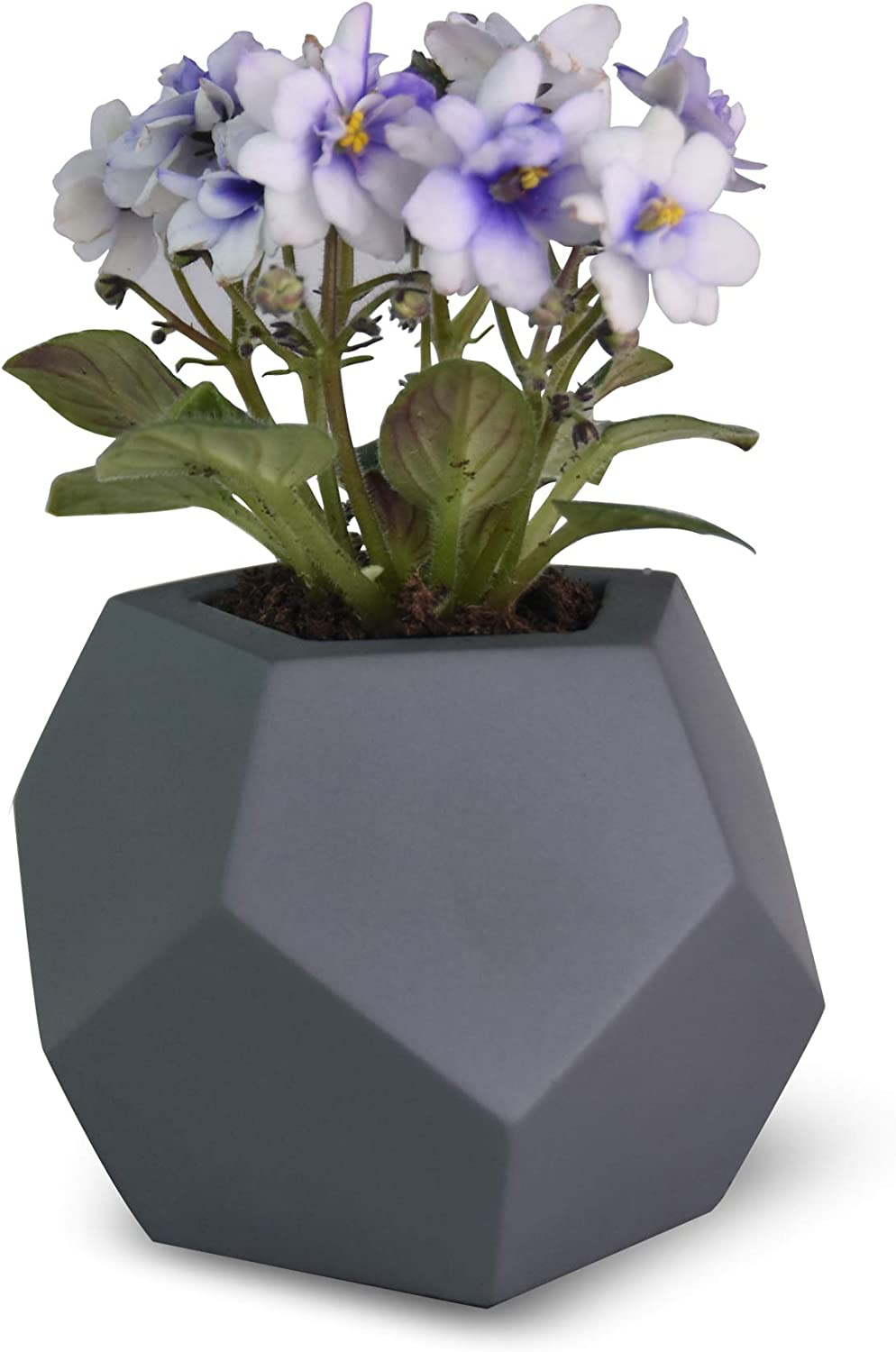 Flower Pots Garden Pot Planters Indoor Planter Modern Style Home Decoration, MuIti Size Select, Indoor Outdoor Succulent Pots for Plants,MODENO (3.5 x 3.5 x 2.9inch)