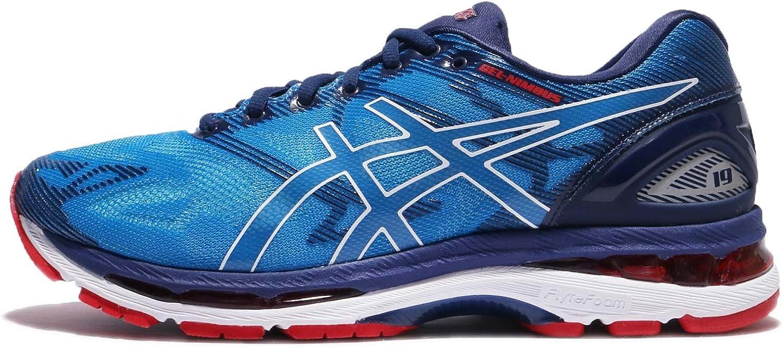 Asics Gel-Nimbus 19 Zapatillas para Correr (2E Width) - 41.5: Amazon.es: Zapatos y complementos