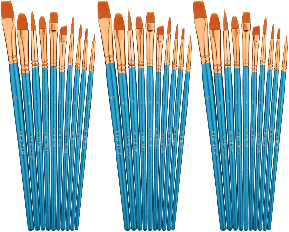30 Pcs Artist Oil Watercolor Paint Brush Set 10 Different Shapes and Sizes Professional Nylon Hair Brushes with Bag for Acrylic Painting
