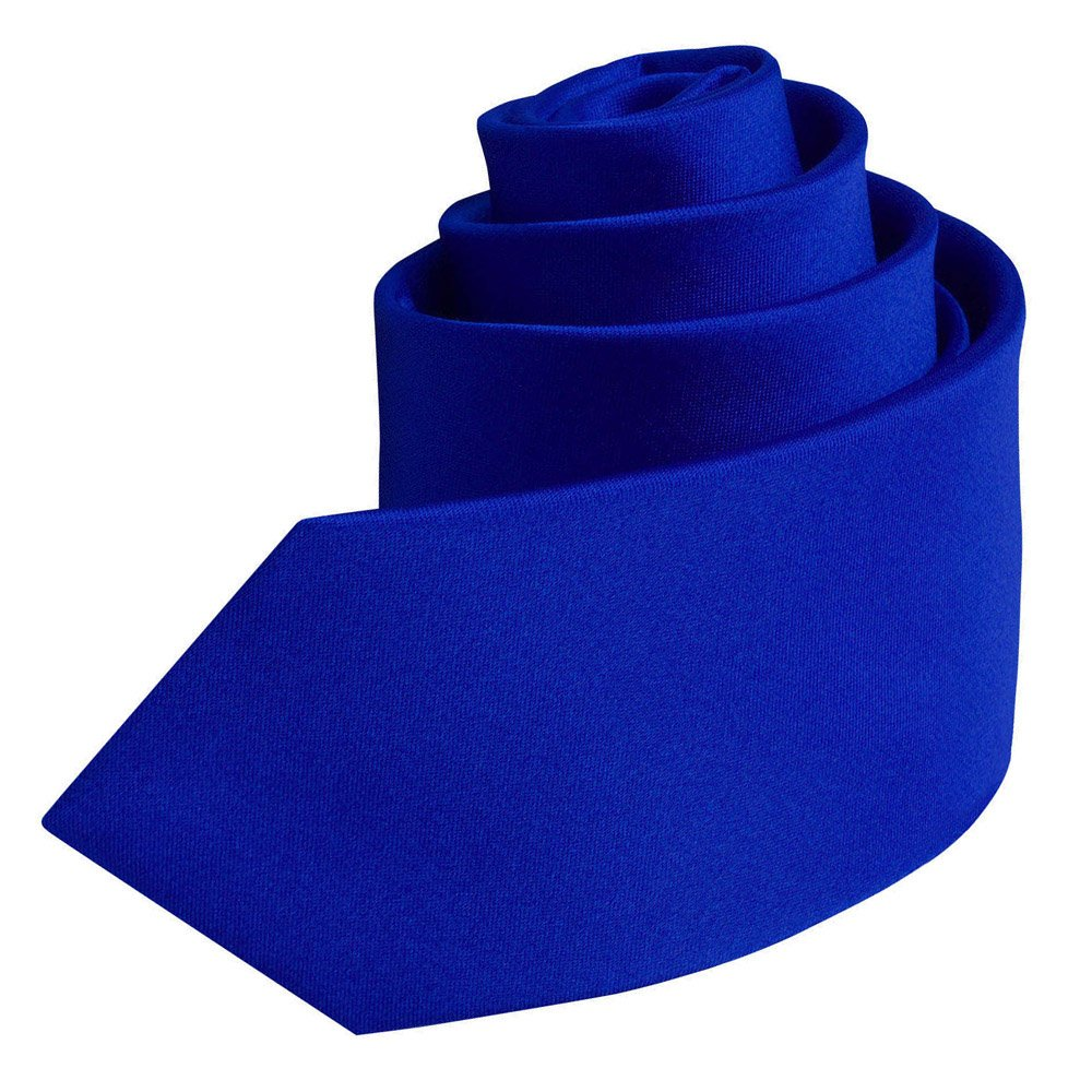 DQT Boys Plain Satin Royal Blue Neck Tie