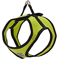 RC Pet Products Step in Cirque Soft Walking Dog Harness, Small, Lime