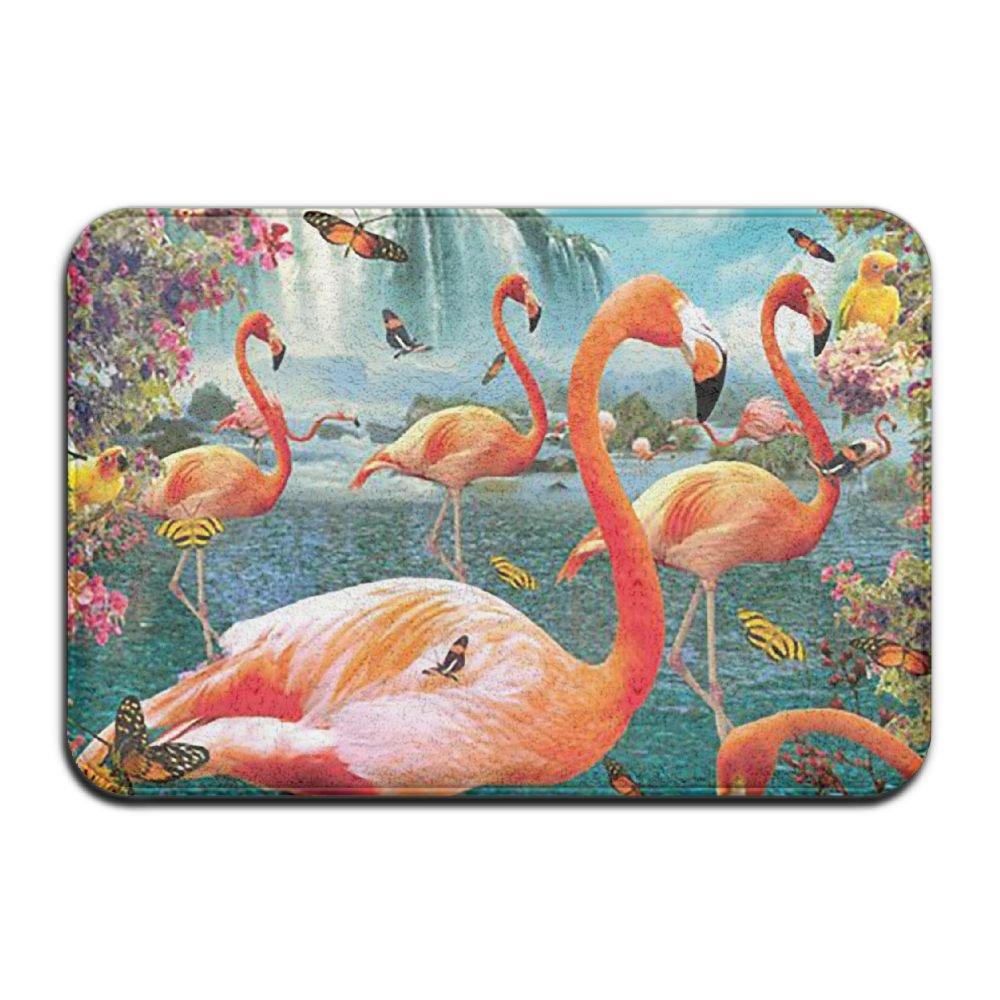 BINGO BAG Goldfish Flamingos Indoor Outdoor Entrance Printed Rug Floor Mats Shoe Scraper Doormat For Bathroom, Kitchen, Balcony, Etc 16 X 24 Inch