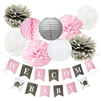 Pink Grey Baby Shower Decorations for Girl Nursery Decor Welcome Baby Banner Pink and Grey Elephant Baby Shower