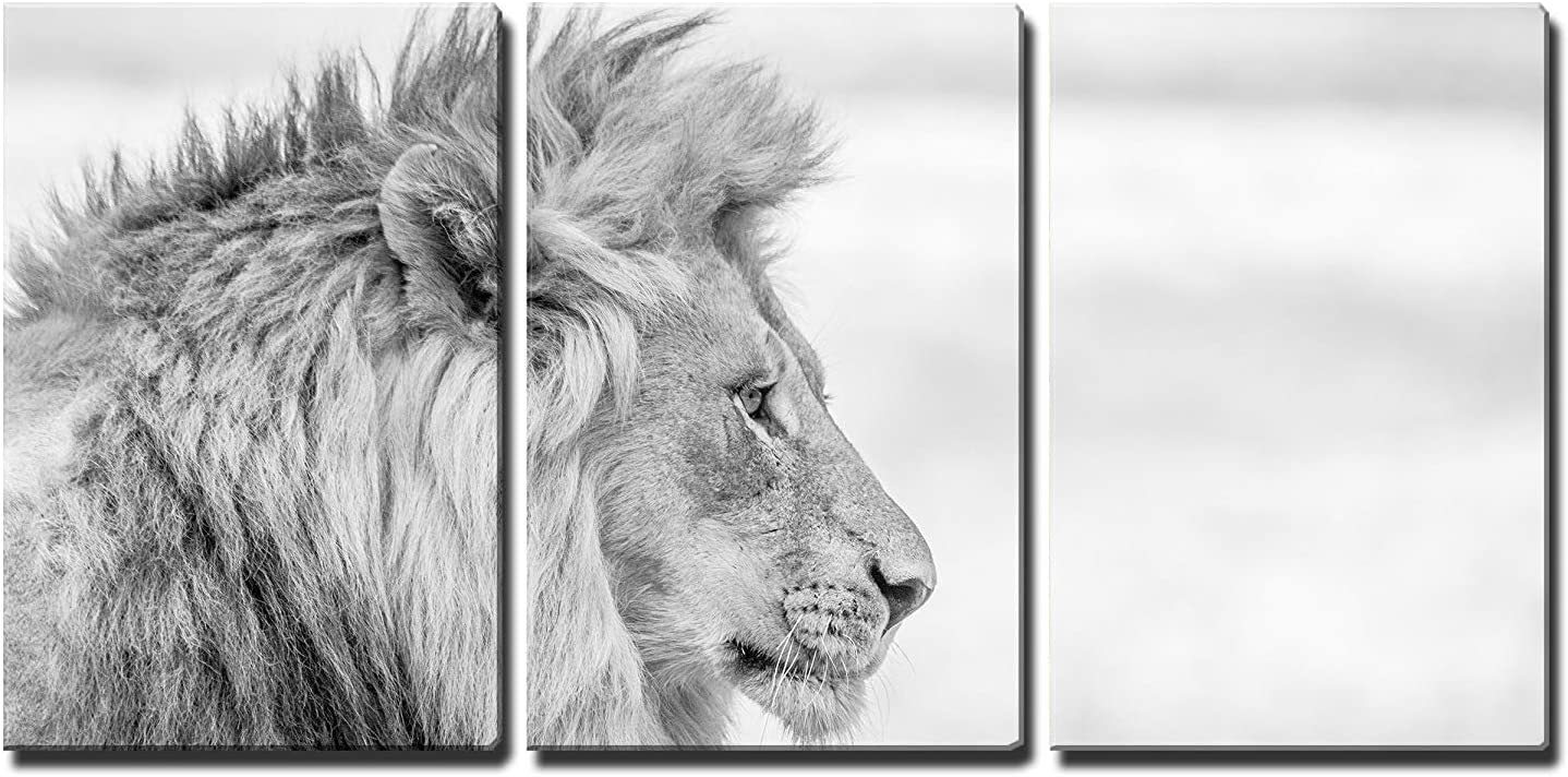 African Lion Home Decor