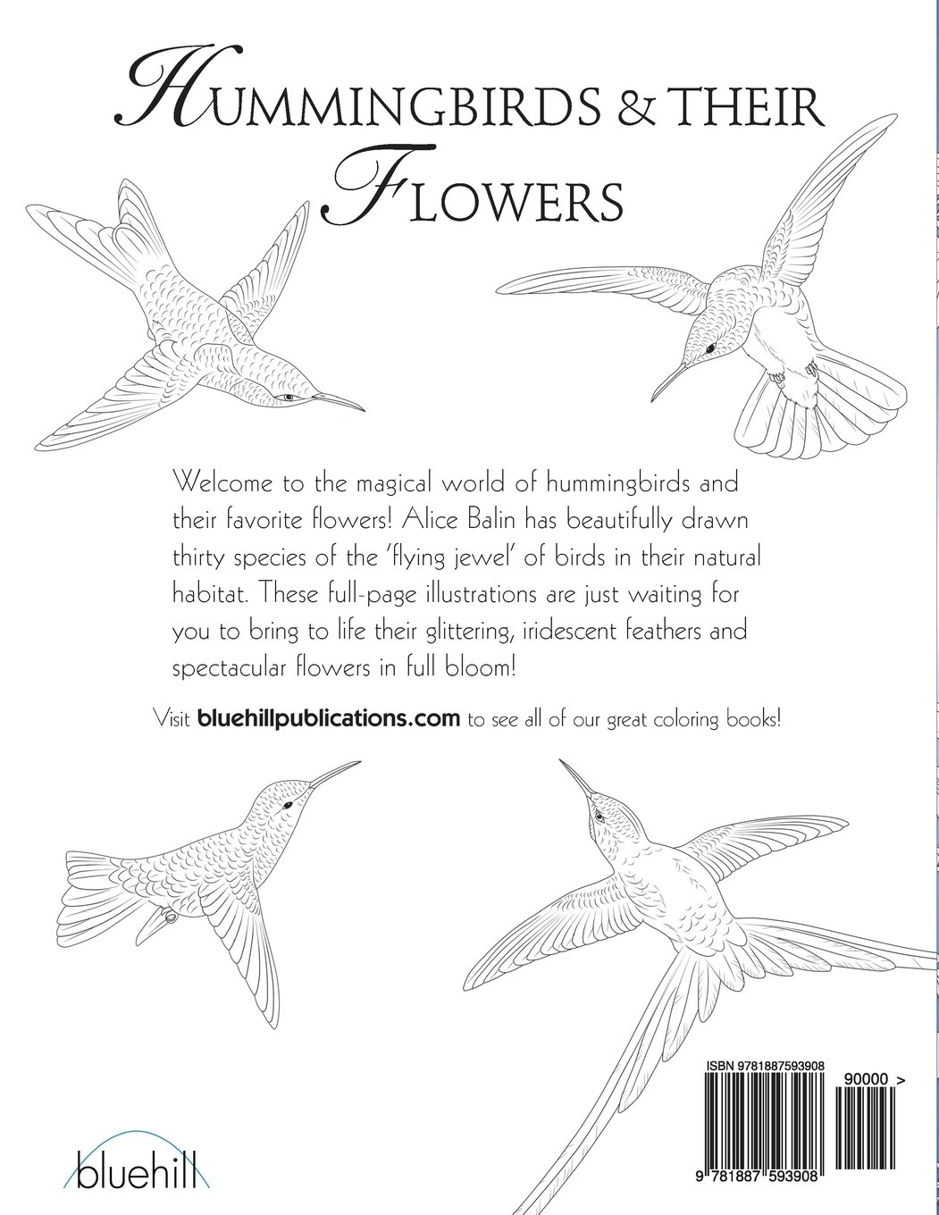 hummingbirds u0026 their flowers coloring book alice balin