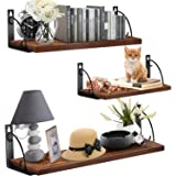 ANEDER Floating Shelves for Wall Set of 3, Rustic Wall Storage Shelf Heavy Duty Display Ledge Hanging Shelf Organizer for Bed