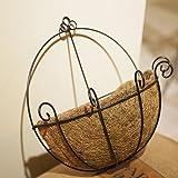 PERTTY 2 Pcs Iron Wall Hanging Planters Basket
