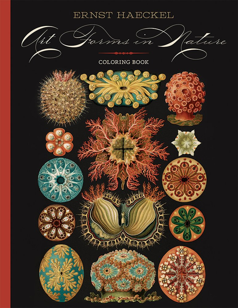 Read Online Ernst Haeckel: Art Forms in Nature Coloring Book pdf epub