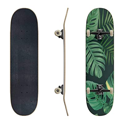 EFTOWEL Skateboards Tropical Seamless Pattern with Palm Leaves Background Rainforest Classic Concave Skateboard Cool Stuff Teen Gifts Longboard Extreme Sports for Beginners and Professionals : Sports & Outdoors